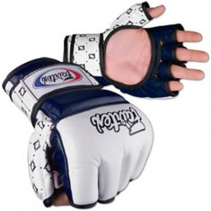 Fairtex MMA Grappling Gloves UFC FGV 17 Blue