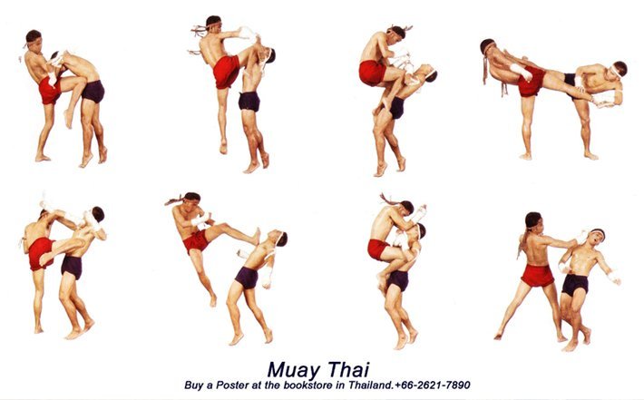 muay thai kick tutorial