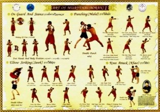 Muay thai training poster