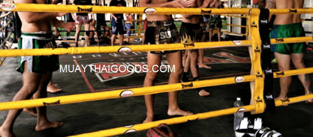 ROPE COVER BOXING RING TWINS SPECIAL YELLOW BLACK