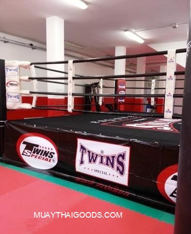 canvas boxing ring twins special