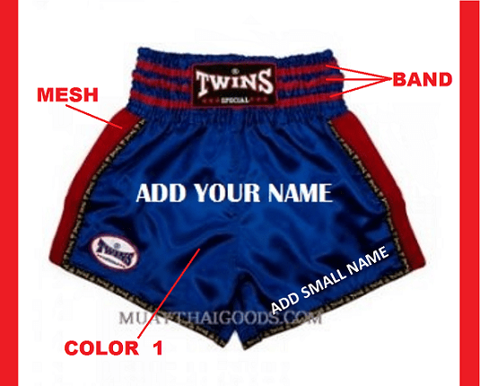 CUSTOM MUAY THAI SHORTS BY TWINS SPECIAL MODEL 1