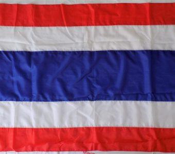 THAI THAILAND FLAG SIAM MUAY THAI GLOVES