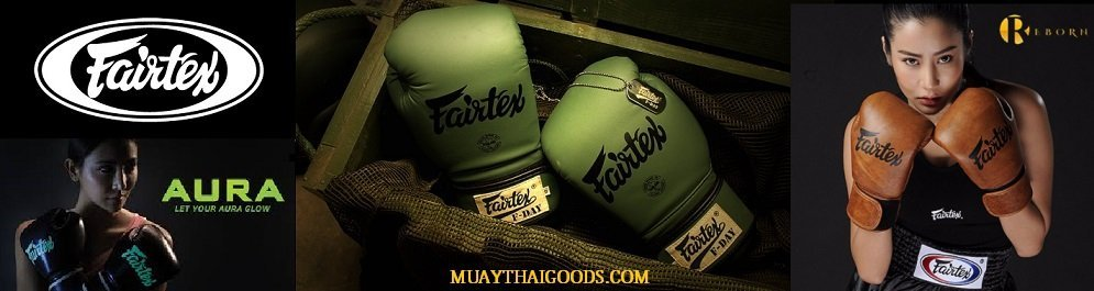 FAIRTEX GLOVES BGV1 BGV9